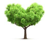 tree in heart shape illustration Royalty Free Stock Photography