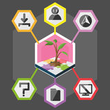 Tree Hexagon Modern Info Graphic Color full Vector Royalty Free Stock Image