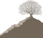 Tree on a hill. Ink drawing of a tree on a hill royalty free illustration