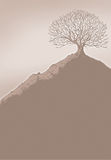 Tree on a hill. Ink drawing of a tree on a hill Stock Photography