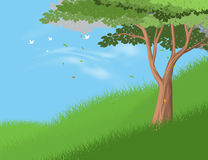 Tree on hill. Beautiful tree on hill vector forest and nature landscape background Stock Image