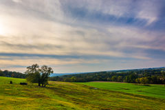 Tree on a hill in rural Lancaster County, Pennsylvania. Stock Photos