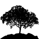 Tree at hill silhouette vector Stock Photos