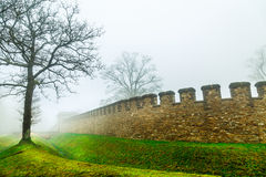 The Tree and Historic Ancient Rome Castle in a Foggy Misty Day. Photo stock photography