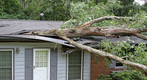 Tree Hits House Royalty Free Stock Photography