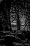 Tree through a hole in cave. This was taken from inside a cave in Missouri looking out at a tree and empty field in the background Royalty Free Stock Photography