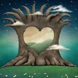 Tree hollow heart. Stock Photo
