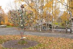 Tree with honeymooners locks in park Royalty Free Stock Photos