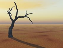 Tree on Horizon. A background Tree on evening Horizon with a sign of drought or global warming Royalty Free Stock Photos