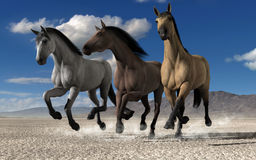 Tree horses running. Through desert fields. 3d rendering Royalty Free Stock Photography