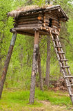 Tree House Stock Image