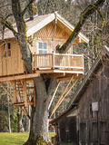 Tree house Stock Photography