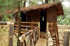Free Tree House Royalty Free Stock Photo - 47619035