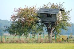 Tree House. Old tree house Stock Photography
