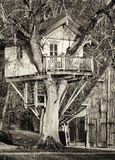 Tree house Royalty Free Stock Photo