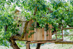Tree House - Cottage - Farm Royalty Free Stock Image