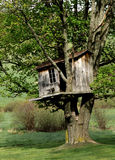 Wonderful Old Treehouse in the Country. Stock Image