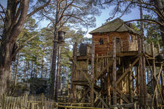 Tree house in a forrest Stock Image
