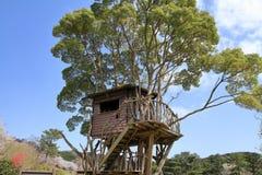 Tree house in Higashi izu royalty free stock image