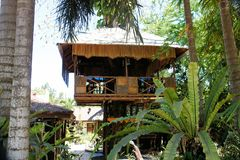 Tree house in the jungle . Palawan Island . Royalty Free Stock Photography
