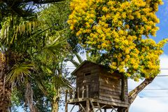 Tree house for kids in the garden. royalty free stock photography