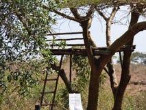 A tree house Stock Photo