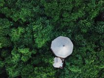 Tree house in the middle of the forest stock photography