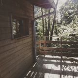 Tree house. Photography of forest on tree house Stock Photography