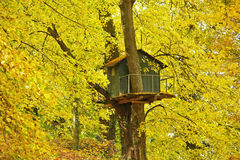 Tree house. Small tree house in colorful autumnal tree Stock Photos