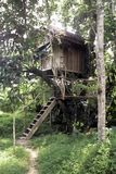 Tree house, Thailand Stock Photos