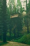 Tree house with vintage effect. Tree house with vintage filter effect royalty free stock images