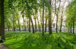 Tree Houses in the Beguinage Garden in Bruges Stock Images
