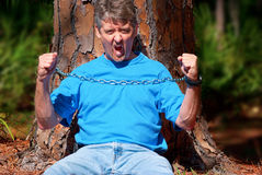 Tree hugger protesting deforestation Royalty Free Stock Images