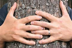Tree hugging Royalty Free Stock Photography