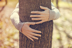 Tree hugging Royalty Free Stock Photo