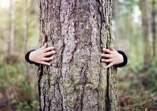 Tree hugging, love nature. Tree hugging, little boy giving a tree a hug concept for love nature royalty free stock photo