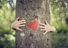 Tree hugging, love nature. Tree hugging, little boy giving a tree a hug with red heart concept for love nature Royalty Free Stock Photo