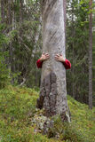 Tree hugging. Man hugging a dry tree trunk with only hands visible Royalty Free Stock Photography