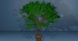 Tree i en kruka royaltyfri illustrationer