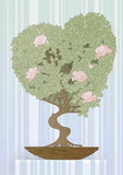 tree i forma av en hjärta Fotografering för Bildbyråer