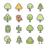 Tree Icon Bold Stroke with Color Stock Photo