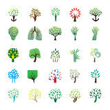 Tree icon collections Stock Photography