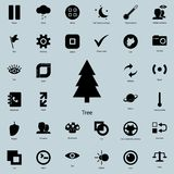 Tree icon.  Detailed set of minimalistic icons. Premium graphic design. One of the collection icons for websites, web design, mobi. Le app on white background Stock Image