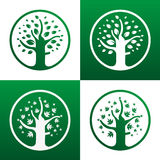 Tree icon. Nature icons associated with trees which can be used Stock Photos