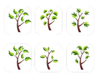 Tree Icon set Stock Image