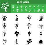 Tree icon set  Stock Photo