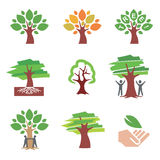 Tree_icons. Set of  tree icons and ilustrations. Vector illustration Royalty Free Stock Photo