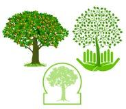 Tree icons. Tree icon set on a white background Stock Photography