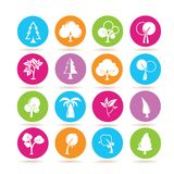 Tree icons. Set of 16 tree icons in colorful buttons vector illustration
