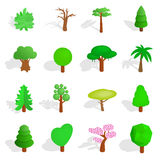 Tree icons set. In isometric 3d style  on white background Stock Photo